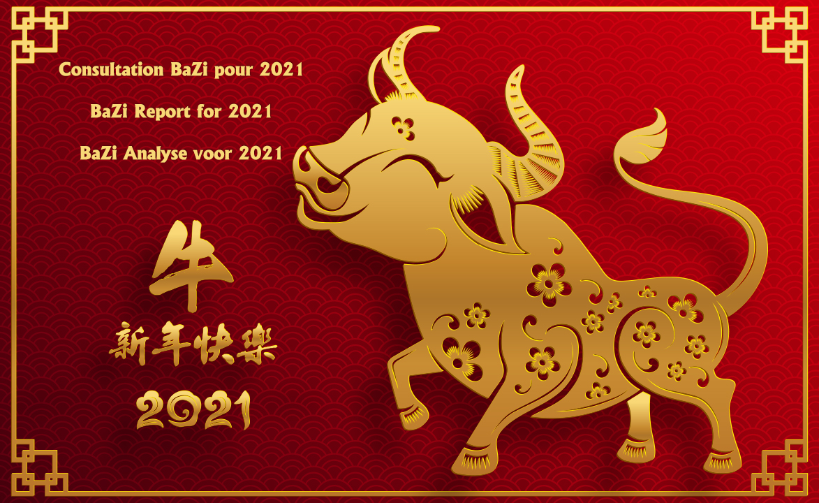 Have your own BaZi Chart analyzed specifically for the Year of the Metal Ox 2021 !