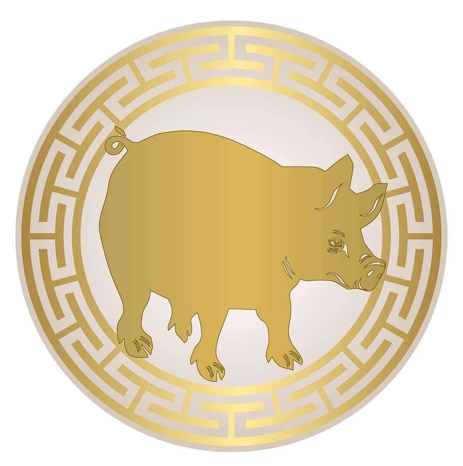 Astrological forecasts for the Pig in 2017