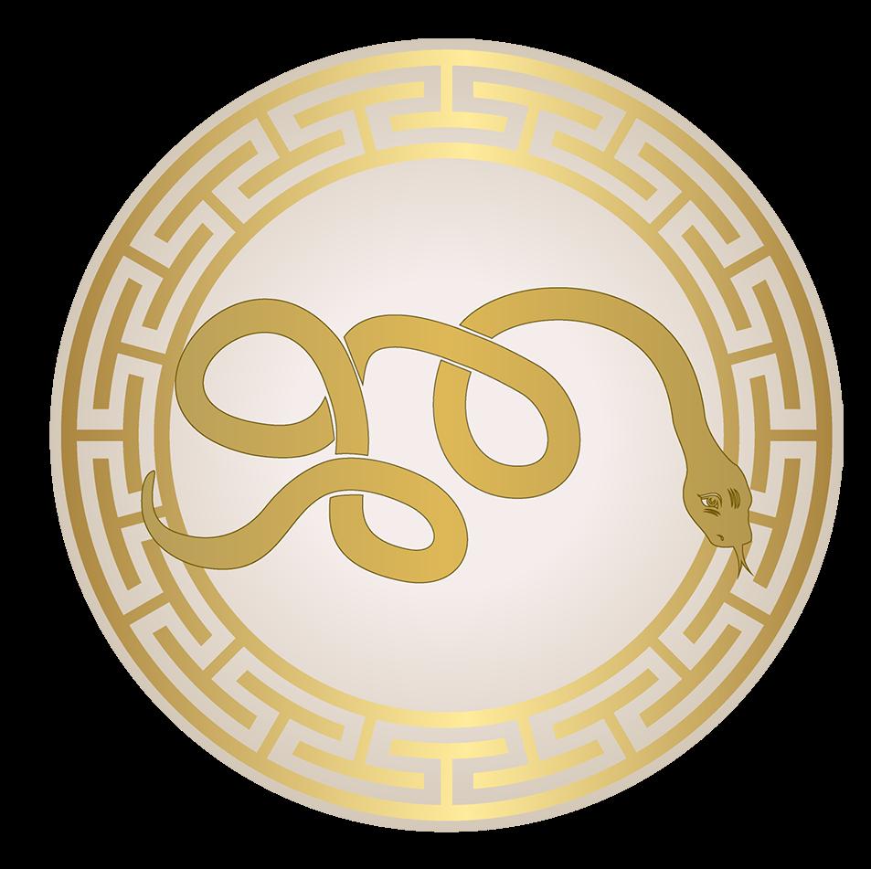 Prévisions astrologiques pour le Serpent en 2017