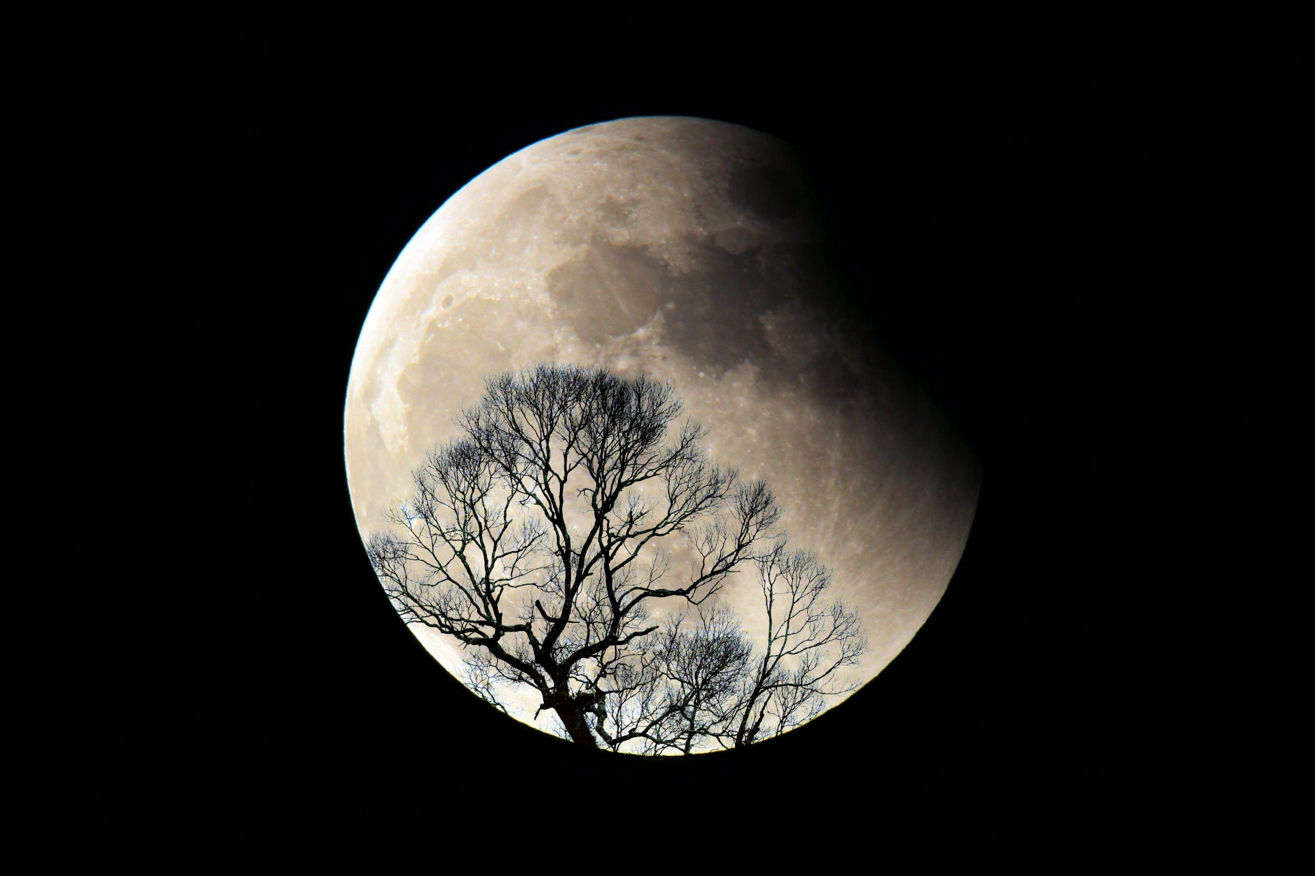 Full moon and Lunar Eclipse
